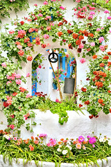 Agua de primavera (Julián Iglesias) Tags: flores geranios patio cordoba pozo jardin puertas azul verde rojo flowers geraniums well garden doors blue green red nikond5500