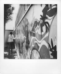 (Akira F.) Tags: polaroid sx70 instant film impossibleproject blackandwhite monochrome bwsx70 filmphotography