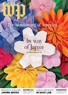 How to make the paper flowers from The Washington Post Magazine Cover