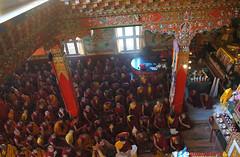 Lam Dre begins as viewed from above - on the left side Tulkus, abbots, monks, in the main shrine room, Tharlam Monastery, Boudha, Kathmandu, Nepal (Wonderlane) Tags: nepal lamdre tibetanbuddhism sakyasect sakya empowerment initiation bodha bodhanath kathmandu tharlammonastery boudha religious tantra tantric buddhist buddhism 2148 lamdretulkus abbots monks shrineroom tibetan architecture ornate tibetanbuddhist religion spiritual buddhists practice enlightenment path result tradition blessing traditional vajrayana metalstatueofbuddha hisholinessjigdaldagchensakya seniortibetanlama readinglamdreempowerment photosofseniorlamaslinestheshrine 2majorstudents sakyafoundersmural red white blue boudhanath