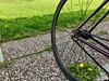 IMG_2852 (uki_cafe) Tags: japan hokkaido spring nature iphone iphonex grass bicycle fixedbike fixedgear fuji feather