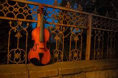 Violin (Mikael Aron) Tags: violin night orange music musikk green fence gras blue iron trees strings instrument stone stones