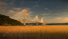 The Queensferry Crossing (GenerationX) Tags: barr canon6d edinburgh fife firthofforth lothian m90 neil northqueensferry portedgar queensferry queensferrycrossing riverforth scotland scottish southqueensferry westlothian bridge cablestayed clouds dusk evening field gold grass landscape roadbridge sky sunset water rosyth unitedkingdom gb