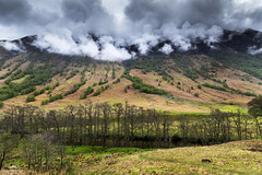 Clouds spilling over. (lawrencecornell25) Tags: landscape scenery scotland scottishhighlands glennevis nature countryside mountains clouds outdoors trees hillside nikond850