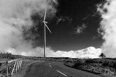 Wind turbine (_rguerreiro_) Tags: wind clouds dramatic cloudy road sky bw monochrome blackandwhite madeira portugal island turbine grass