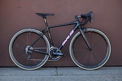 Parlee Altum BLK & Pink 8761