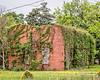 Engulfed (augphoto) Tags: augphotoimagery abandoned building exterior green old texture vines weathered prosperity southcarolina unitedstates