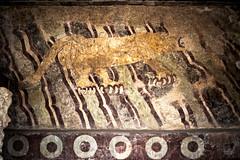 Soy Un Guerrero Jaguar { Teotihuacán, MC } (Charlie Gza) Tags: jaguar panthera pyramids teotihuacan mexico travel cultura travelphotography canon pintura viajes adventure photographer mx teotihuacã¡n estadodemã©xico mã©xico teotihuacán estadodeméxico méxico puma mural