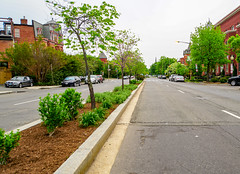 2018.05.06 Vermont Avenue, NW Garden - Work Party, Washington, DC USA 01903