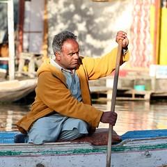 Not a Kashmiri surely? (Nagarjun) Tags: dallake weeds manure boats boatmen srinagar kashmir jk light dawn sunrise