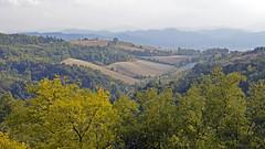 2016.09.11.085 BOLOGNE (alainmichot93 (Bonjour à tous - Hello everyone)) Tags: 2016 italie europe ue italia emilieromagne bologne bologna paysage landscape arbres forêt