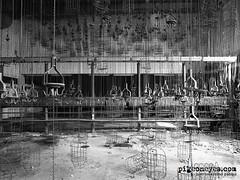 Hellriser (Pigeoneyes.com) Tags: miniera mine abandoned abbandono abbandonata germany germania lockerroom spogliatoio pigeoneyes edificiabbandonati film ilford panf