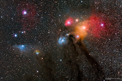 Antares, Rho Ophiuchi and Blue Horsehead (tony.liu.photography) Tags: stars astro astrophotography universe galaxy space night sky colour canon 5d4 lake moogerah queensland australia 2470lii deepsky nebula
