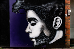 A TRIBUTE TO PRINCE AND GEORGE MICHAEL [BELFAST STREET ART BY GLEN MOLLOY]-139878 (infomatique) Tags: streetart belfast beforebrexit nearqueensuniversity prince georgemichael tribute glenmolloy streetculture may 2018 williammurphy infomatique fotonique streetsofireland uk northernireland