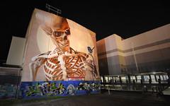 so Smug (Shadyezz) Tags: smug streetart night skull skeleton bird melbourne smugmug