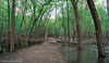 Fort Snelling State Park (Lizzy Lentsch Photography) Tags: saintpaul minnesota fortsnelling fortsnellingstatepark statepark minnesotastatepark park may spring woods forest tree water path