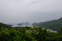 View on Skadar Lake (Nelleke C) Tags: 2018 balkan montenegro nationaalparkskadarskojezero skadarlake holiday lake landscape landschap meer vakantie