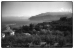 790224997674472 (Alexander Krasotkin) Tags: italy capri matera naples ischia monocle leica film 35mm ilford