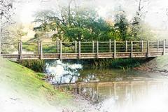 bridge Croome Park (National Trust) (Bobinstow2010) Tags: nationaltrust pershore croome park capabilitybrown watercourse lake bridge trees green topaz photoshop arty