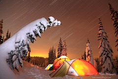 Star Trails Over Winter Camp In Mt Rainier National Park Washington (@randalljhodges) Tags: stars startrails tent tents glowingtents backcountycamping winterbackpacking snowcoveredtree alpinetree snowpack winter winterscene mtrainiernationalpark washington travel usa