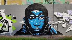 Hafleg... (colourourcity) Tags: streetartaustralia streetart streetartnow graffitimelbourne melbourne burncity awesome colourourcity nofilters ihateshadows burner hafleg bigl tmk halfleg