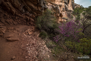 Under Dripping Springs
