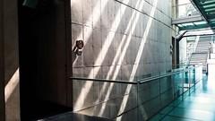 Ático (Stefania Avila) Tags: bogota colombia javeriana atico universidad building architecture sunlight sunlights stairs
