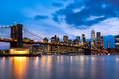 NYC Skyline (_gate_) Tags: nyc new york city east river brooklyn bridge park skyline wtc central usa portrait green lung united states america blond blonde girl environmental nikon 85mm 18g d750 travel photography street grün gate patrick 24120mm 40 asusual thanksforthenicecommentchristina