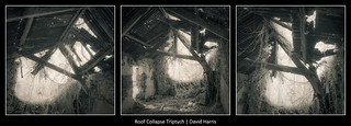 Roof Collapse Triptych