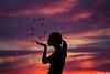 We do not need (gusdiaz) Tags: photoshop photomanipulaton digital art arte composite composition model woman butterflies sunset sundown amanecer atardecer bokeh depthoffield beautiful relaxing artistic artistico mujer modelo mariposas
