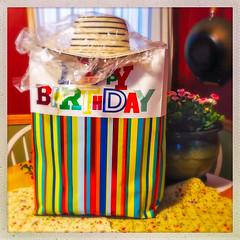 Happy Birthday (Timothy Valentine) Tags: 2018 flowers gift 0518 hat birthday family home contessa eastbridgewater massachusetts unitedstates us