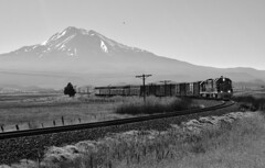 Siskiyou Line Memories (SeanFKelly) Tags: train shasta mountshasta farm agriculture telephonepoles wires backlit backlight black white blackandwhite bw railroad california northerncalifornia norcal siskiyou