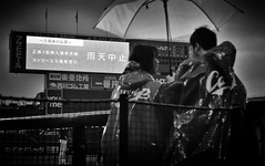 RAIN-OUT 雨天中止 (Sign-Z) Tags: monochrome bw nikon d4s 2470mmf28g stadium baseball hiroshima モノクローム 野球 広島 マツダスタジアム