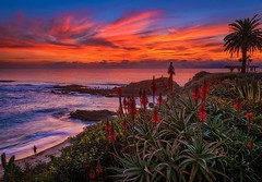 Laguna Beach is the most photogenic coastal town in Southern California. Plan a day-trip there from Disneyland with my guide to Laguna (link in bio)! (Tom.Bricker) Tags: ifttt instagram