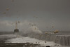 Aberdeen (Teuchter Prof) Tags: aberdeen aberdeenharbour foam surffoam waves storm stormysea breakwater southbreakwateraberdeen winterstorm skyscape scotland