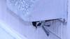 Builder Chickadee (blazer8696) Tags: 2018 bcch brookfield ct connecticut ecw obtusehill paridae passeriformes poeatr poecile poecileatricapillus t2018 tabledeck usa unitedstates atricapillus black blackcapped blackcappedchickadee capped chickadee dryer nest vent img3021