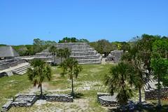 Z.A. X'cambo, Yucatan (dsancheze1966) Tags: xcambo yucatan mayas arqueologia arqueologiamexicana archeology precolumbian precolombina cocodrilo cocodrilocelestial