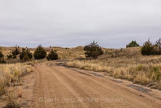 Sand Road in the Nebraska Sandhills