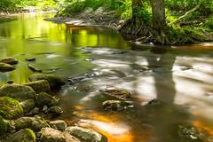 Река Корневка (klgfinn) Tags: landscape light river shadow shore spring stone sunlight tree water берег весна вода дерево камень пейзаж река свет солнечныйсвет тень