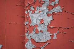 AbstractMural (Tony Tooth) Tags: nikon d7100 nikkor 105mm paint mural abstract peeling peelingpaint red grey whitchurch shropshire