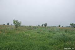 Волинське поле InterNetri Ukraine 022