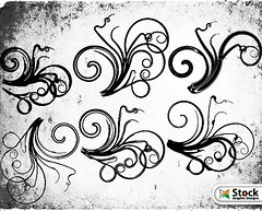 Free Floral Vector and Photoshop Brushes (stockgraphicdesigns) Tags: decor decoration decorative elegant filigree floral flourish flowers nature ornaments ornate swirl