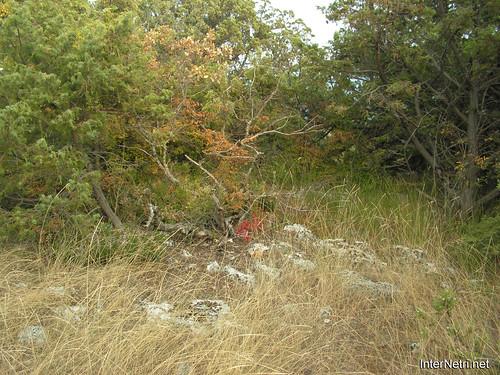 Крим, Таврські могильники на горі Кішка InterNetri Ukraine 2009 156