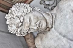 Galo moribundo (Hesperetusa) Tags: epígono escueladepérgamo esculturahelenística artegriego