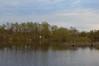 Весенний разлив (allav.patrakova) Tags: nature spring water river sky природа вода река небо весна отражение деревья