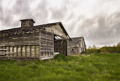 The Old Sisters (SteveFrazierPhotography.com) Tags: barns wood wooden old dilapitated decaying field farm farmland farming agriculture illinois il stormy gray clouds sky day daytime daylight afternoon springtime spring usa america midwest rural boards outdoor building stevefrazierphotography photographer