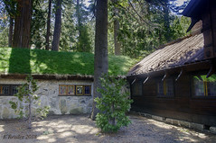 Sod Roofs at Vikingsholm (Greatest Paka Photography) Tags: sod roof traditional scandanavian lorajosephineknight laketahoe emeraldbay vikingsholm castle home medieval lennartpalme architecture sodroof nature building nationalregisterofhistoricplaces house forest history
