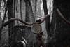 Hell bell (MIKAEL82KARLSSON) Tags: junk järn iron rost rust övergivet old övergiven rusty cykel bike bw svartvit decay pentax k70 tamron 1750mm f28 sverige sweden dalarna grängesberg gränges gammal gammalt gamlagrängesberg grängesgruva mikael82karlsson