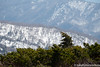 (takafumionodera) Tags: caldera japan miyagi mountain pentax q7 tree zao カルデラ 宮城 山 御釜 木 蔵王