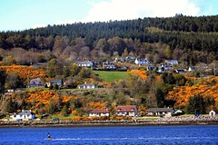 #Inverness #Blackisle #Highlands #Scotland (m.a.kruiswijk) Tags: highlands blackisle inverness scotland